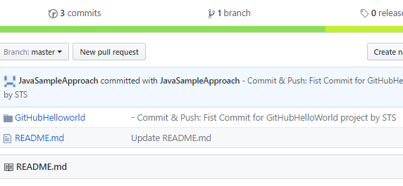 GitHub-First Commit STS project