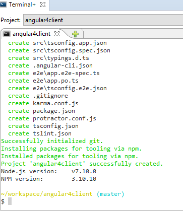 angular4 component - create project done