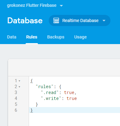 Flutter Firebase Database example - Firebase Database CRUD