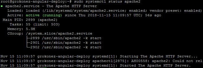 deploy-angular-client-on-apache-server-with-vultr-hosting-check-apache-server-active