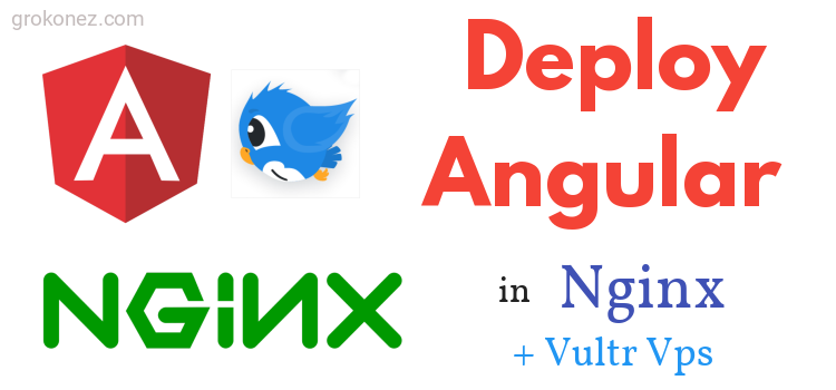 How to Deploy Angular on Nginx remote Server Example – Use Vultr VPS Hosting