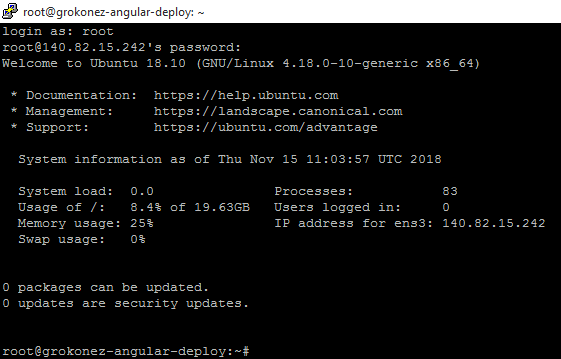 deploy-angular-client-putty-connect-to-vultr-hosting-server