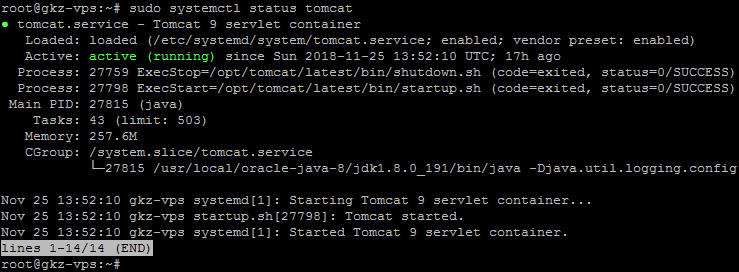 deploy-angular-on-apache-tomcat-remote-server-with-vutr-hosting-tomcat-status