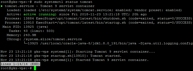 install-java-in-linux-remote-server-with-vultr-hosting-vps-tomcat-status