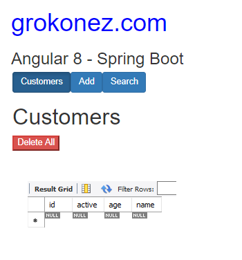 spring-boot-angular-8-example-crud-mysql-delete-all-customers