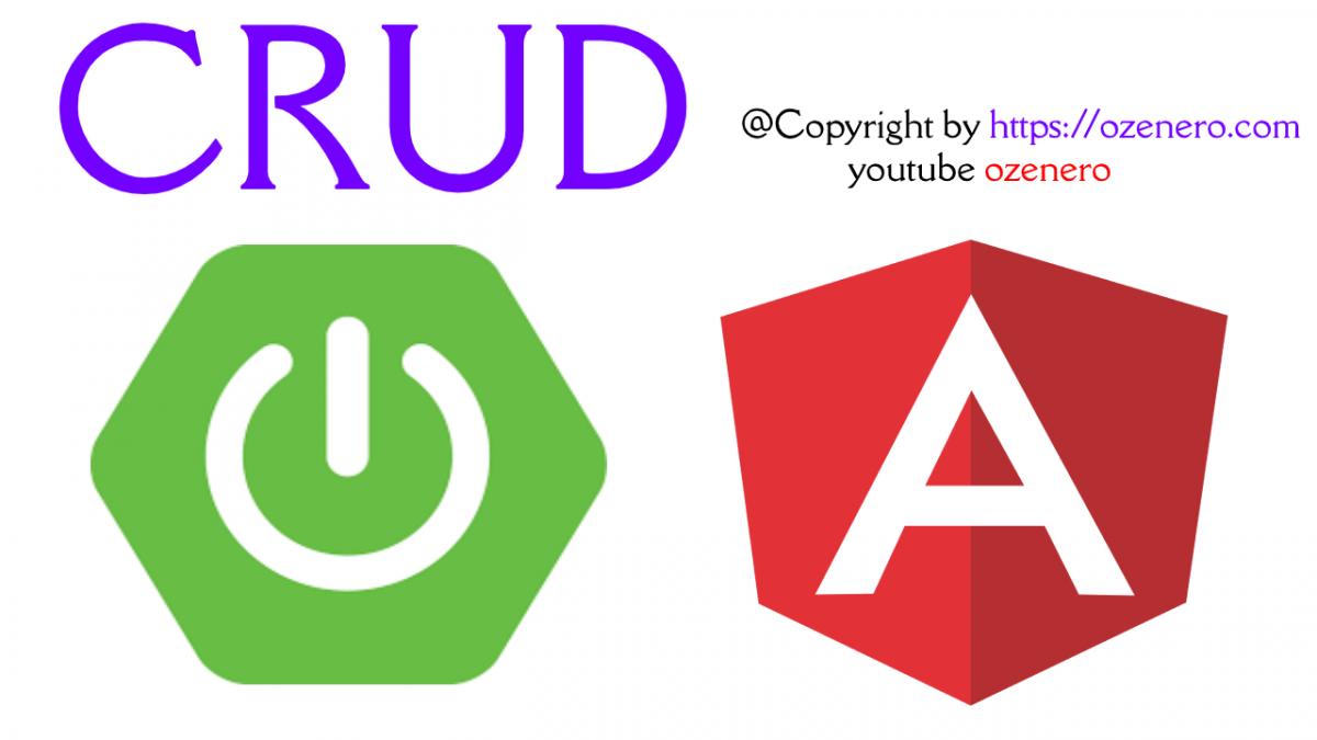 Springboot Angular 11 MySQL CRUD Example with (Spring 2.x)